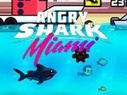 Requin en colère Miami