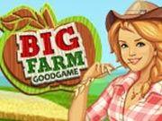 مزرعة كبيرة