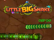 Petit gros serpent