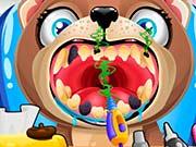 Щенок лечит зубы у стоматолога