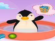 Дневной уход за пингвином Рой